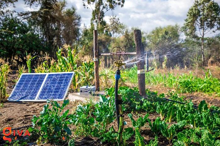 Hệ thống bơm nước năng lượng mặt trời 0.5 HP 1