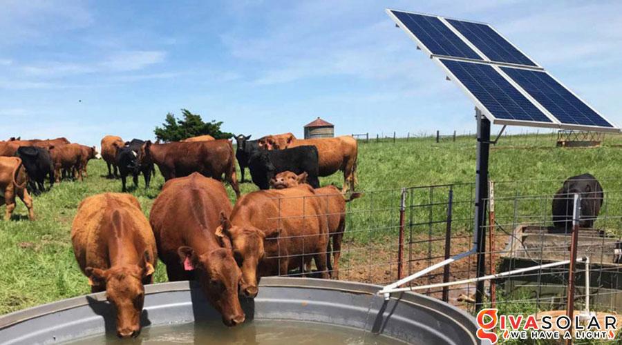 Hệ thống bơm nước bằng năng lượng mặt trời 2HP 4