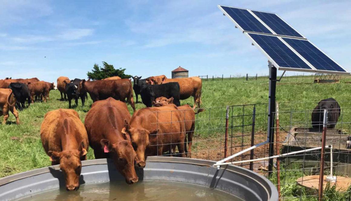 Ứng dụng hệ thống bơm nước năng lượng mặt trời