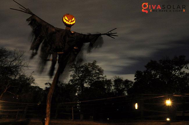 ý tưởng trang trí Halloween ngoài trời 34
