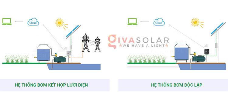 Điện mặt trời kết hợp với Nông Nghiệp 3