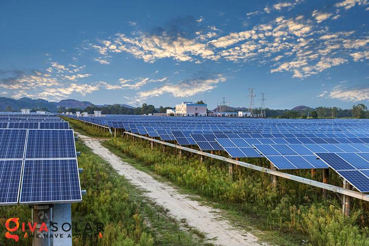 Điện mặt trời kết hợp với Nông Nghiệp 9