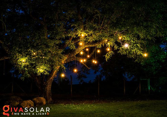 ý tưởng trang trí cảnh quan sân vườn thêm ấn tượng với đèn 5
